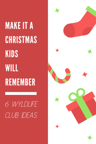 Make it a Christmas Kids Will Remember